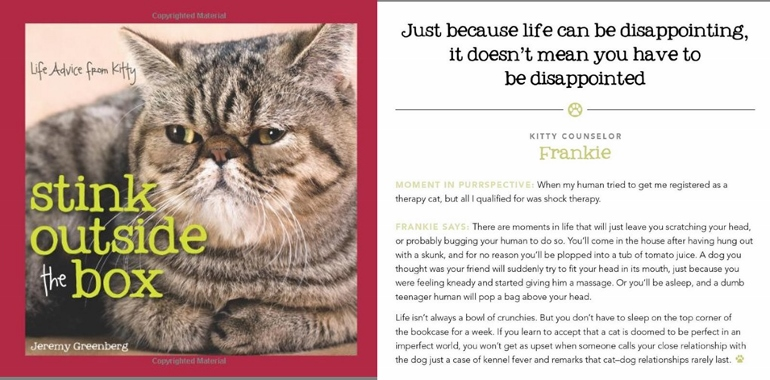A laugh out aloud book for cat lovers. Perfect gift for cat people.