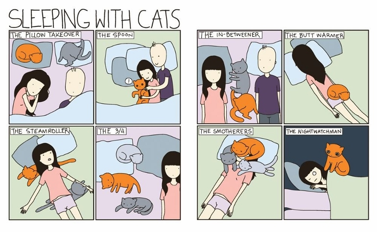 an apt gift for cat lover and cat people