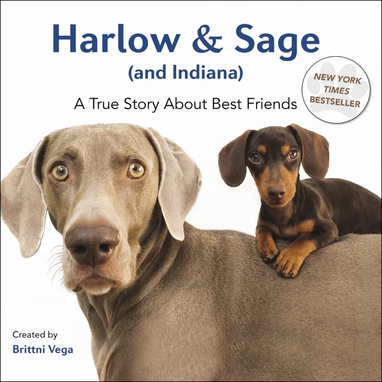 This book on Harlow and Sage will touch every dog lovers heart. Give it as gift to the dog lovers in your life.