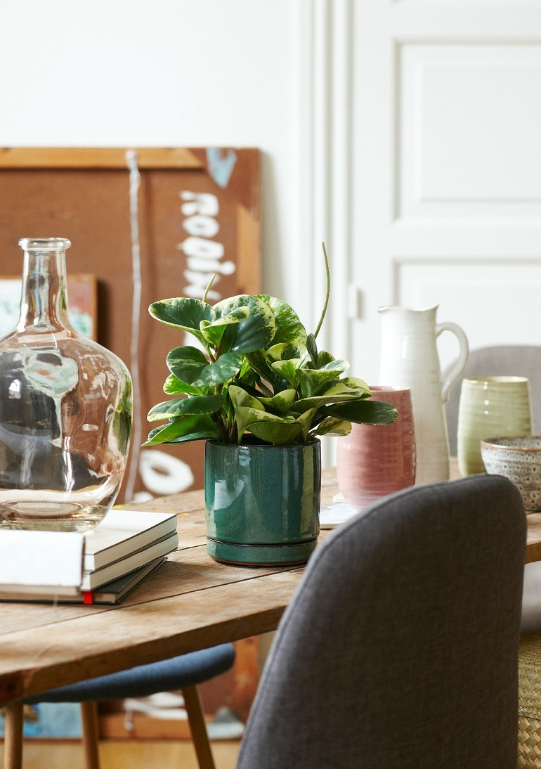 spring decor with ceramic flower pots from Søstrene Grene